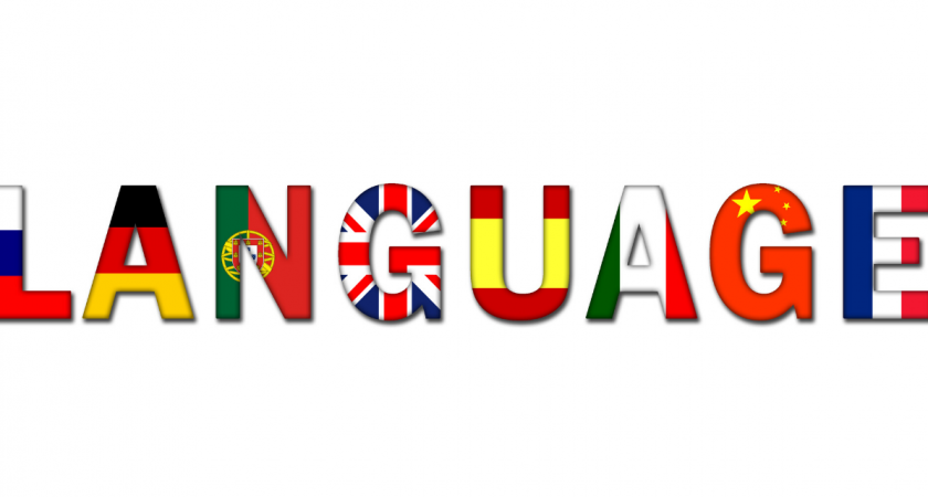 Formations en langues